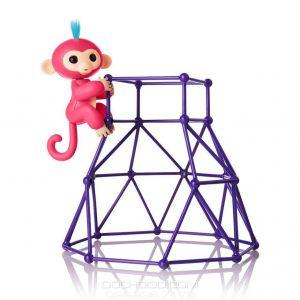 Bộ Cây Leo Trèo Cho Khỉ Ngón Tay Finger Monkey